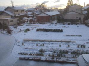 今冬初めての雪景色